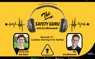 Leaders Owning It for Safety! with Brie DeLisi