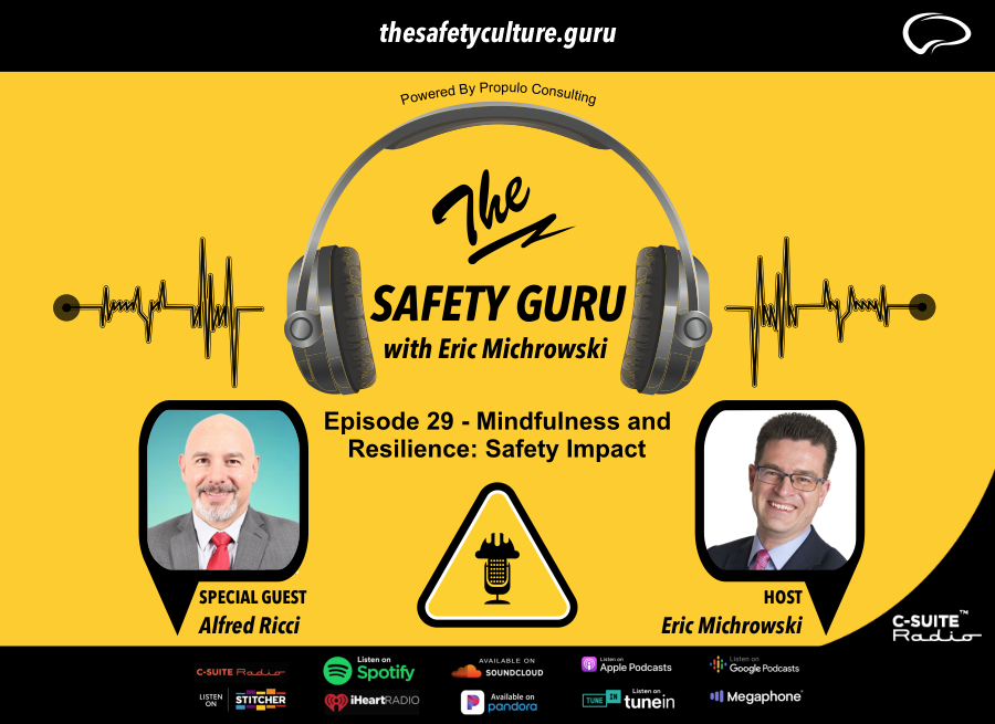 The SAfety Gurur- mindfulness and resilience Safety impact